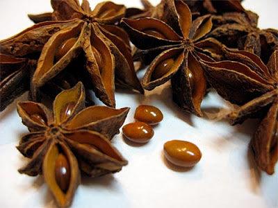 Anis estrellado semillas