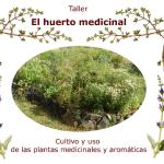 Taller Huerto de Plantas Medicinales