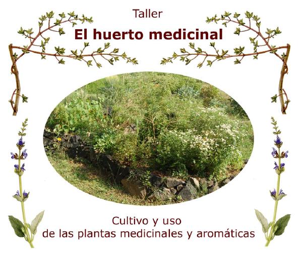 Taller Huerto de Plantas Medicinales Manual descargable.