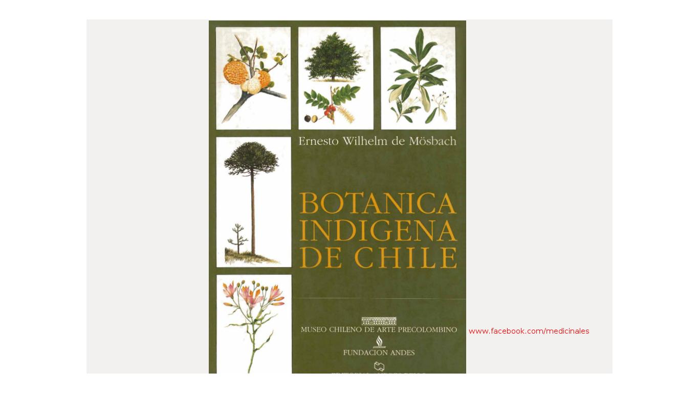 Botánica indígena de Chile Libro para descargar.