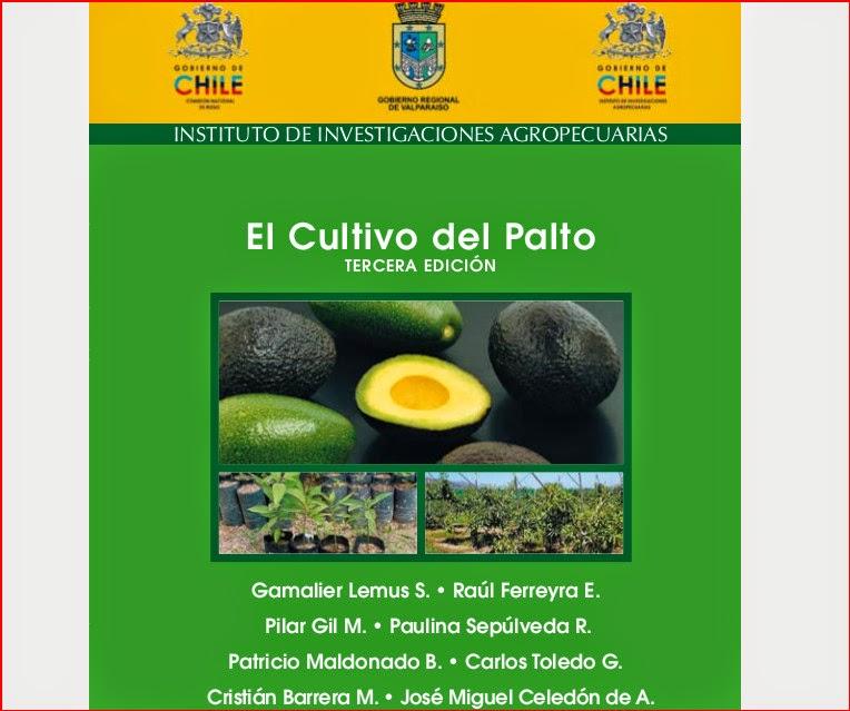 El cultivo del Palto. Guía completa y descargable para su cultivo.