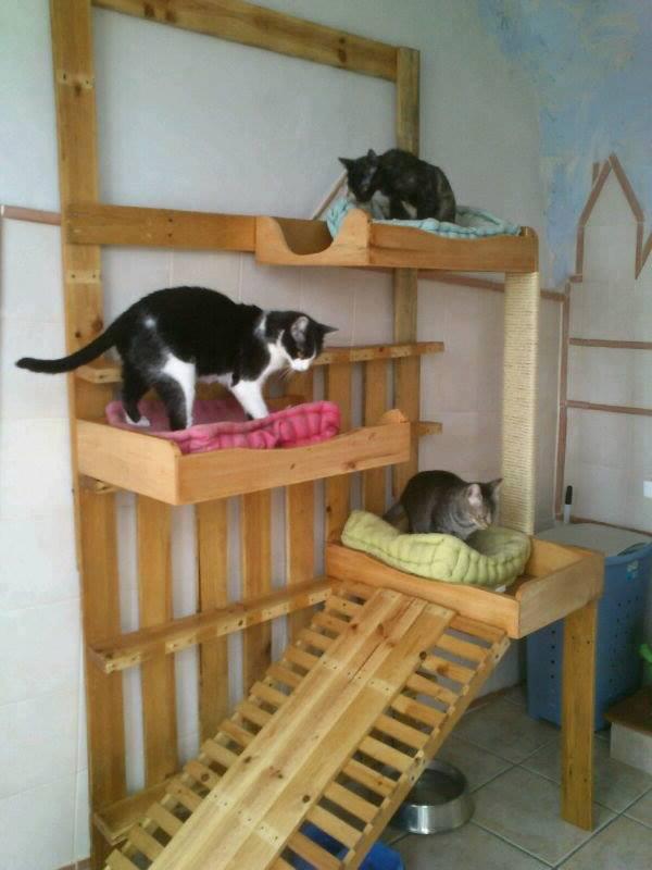 Pallets grandes ideas para fabricar muebles - Casas con palets de madera ...